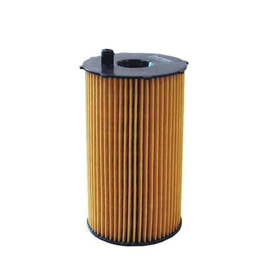 FILTRON filtr oleju OE667/2 - Peugeot 407/607 2.7HDI V6 04-